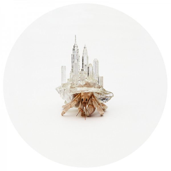 Aki Inomata Gives Hermit Crabs Artificial Shells Inspired By Iconic City Architecture