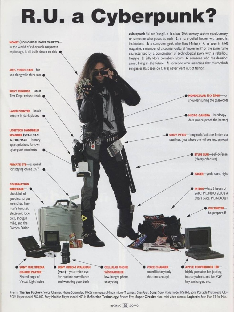 Are You Cyberpunk?