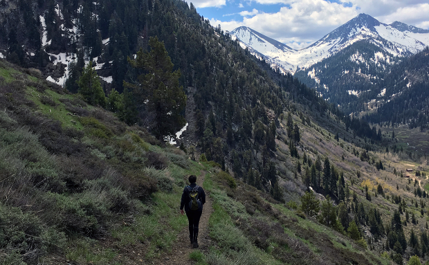 Hiking through Mineral King Valley