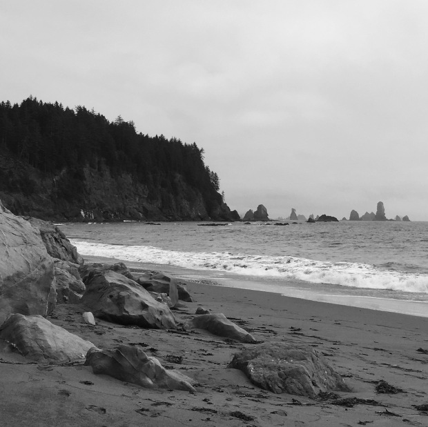 The fog cleared and we got some decent views of Second Beach's sea stacks