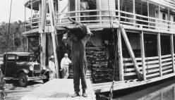 Man unloading a pig
