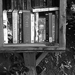 Red Litten World in a Little Free Library