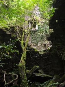 More Buchanan Castle Ruins