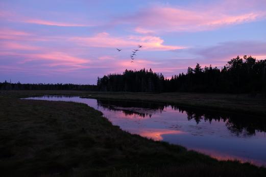 Sunset (Photo by Kari-Lise)