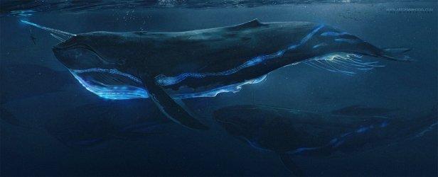 """Sam Hogg - The Whaler Girl - """"Old Two-Horn"""""""