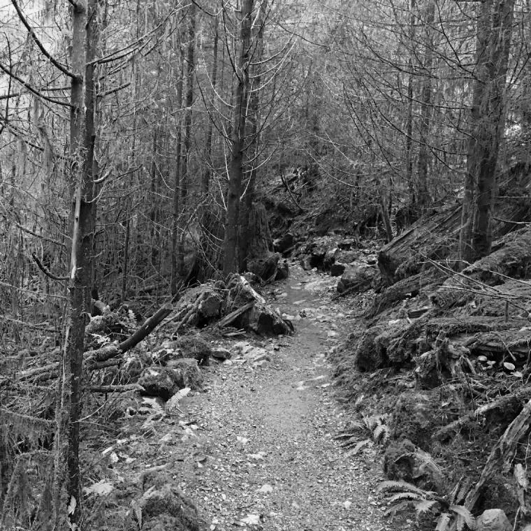 Lime Kiln Trail - 2019